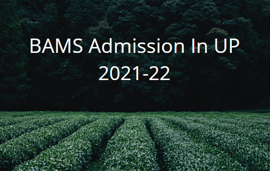 bams admission in up 2021